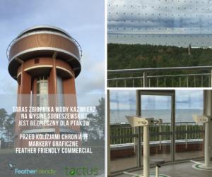 Ochrona ptaków przed kolizjami na Zbiorniku Wody Kazimierz, Wyspa Sobieszewska